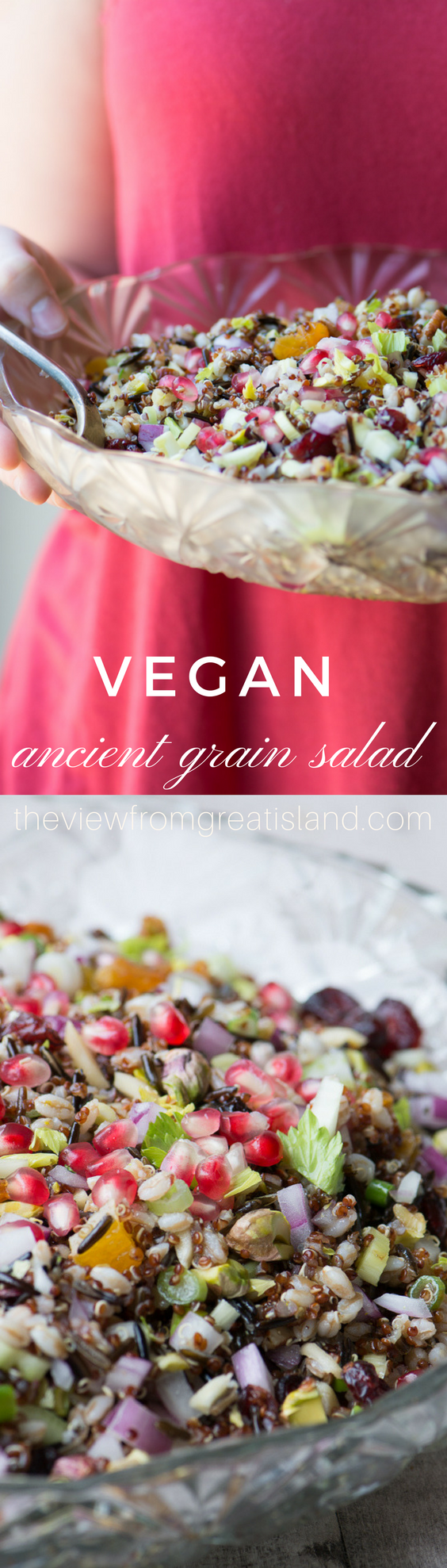 This pretty vegan Ancient Grain Salad is so versatile, it goes from holiday table to working lunch without skipping a beat, and it's as healthy as it is stunning. #salad #ancientgrains #grainsalad #healthysalad #fallsalad #holidaysalad Thanksgivingsalad #Christmassalad #wintersalad #quinoa #wildrice #farro