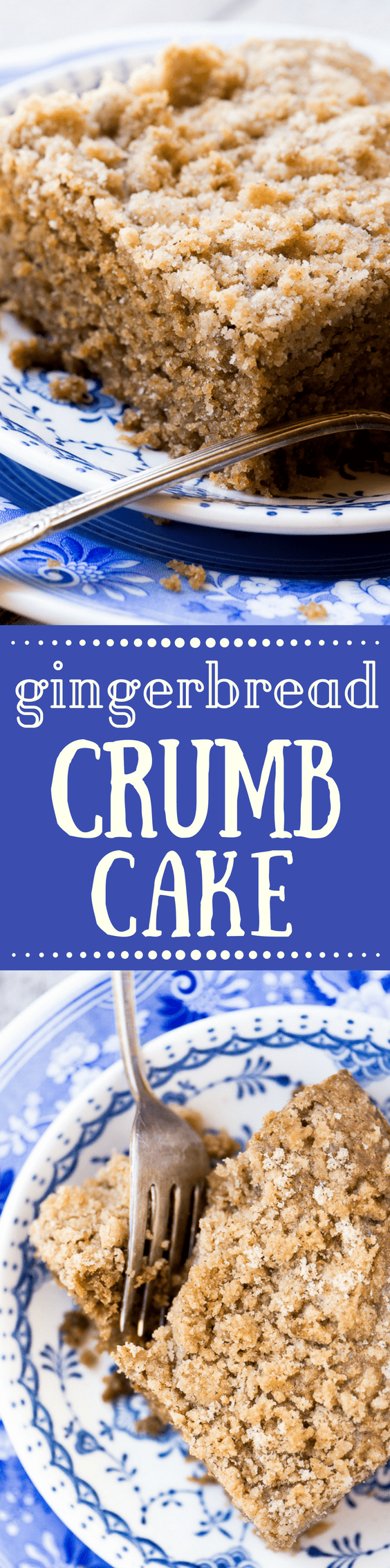 Gingerbread Crumb Cake is a warm spiced coffee cake made super moist and tender with molasses and sour cream ~ it's the perfect way to start a chilly morning, or treat your overnight guests during the holidays! #cake #gingerbread #bestcoffeecake #coffeecake #snackcake #spicecake #gingerbreadrecipe #holidaybreakfast #coffeecakerecipe