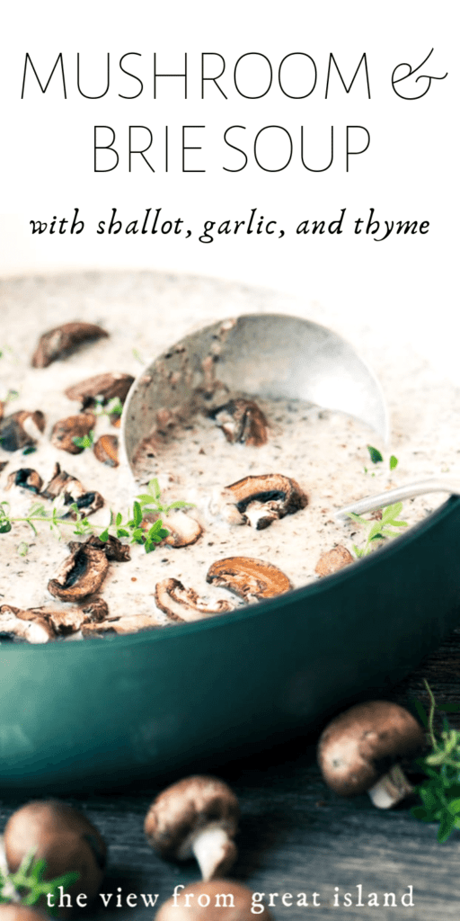 mushroom and brie soup pin