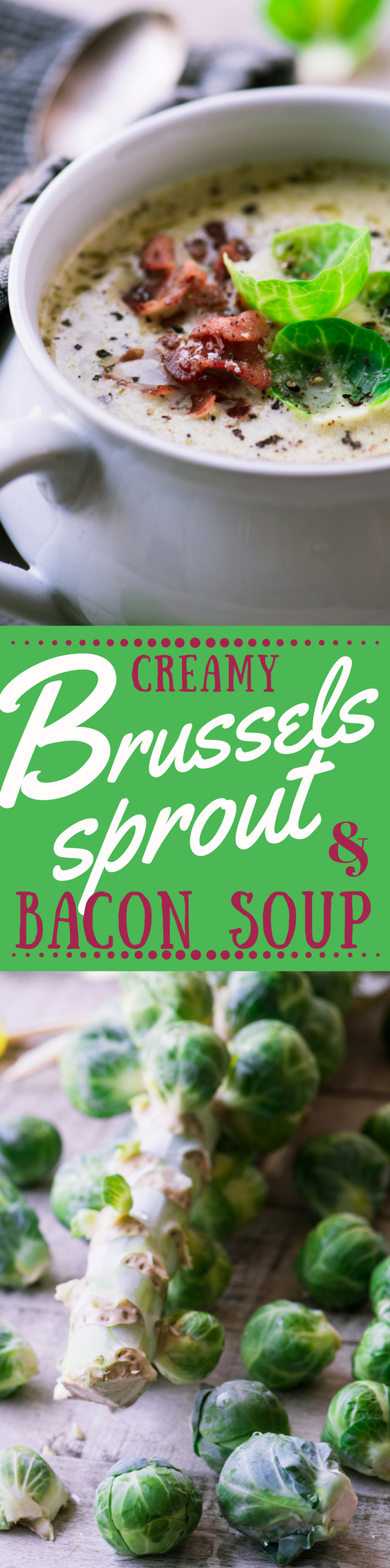 My Cream of Brussels Sprout and Bacon Soup is a comforting meal for a chilly night ~ just add a simple salad, hunk of whole grain bread, and a glass of wine ~ theviewfromgreatisland.com #soup #Brusselssprout #bestbrusselssproutrecipe #comfortfood #chowder @creamsoup #lunch #recipe #fallsoup