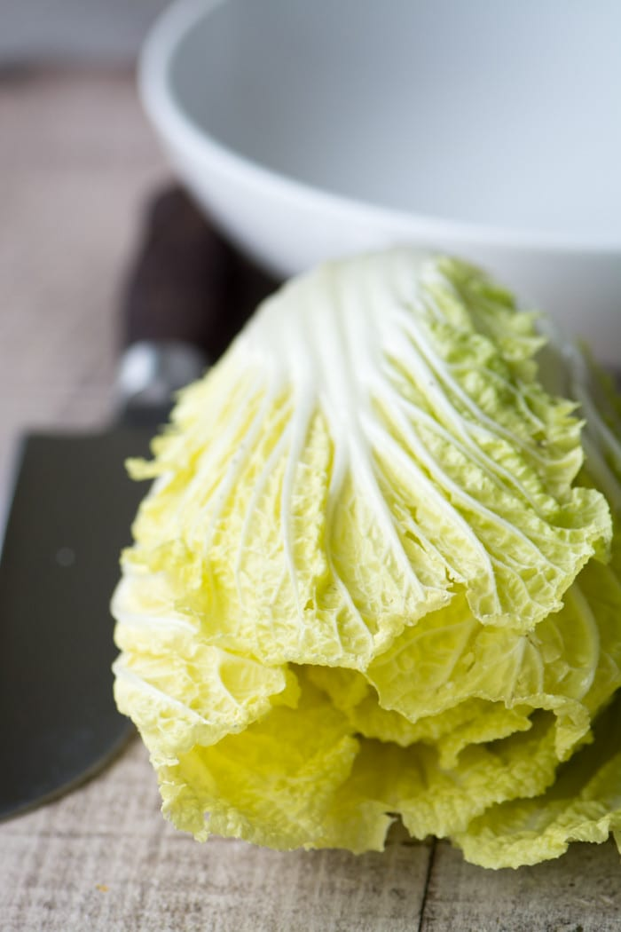 Crunchy Napa cabbage forms the base of my easy homemade Chinese Chicken Salad ~ theviewfromgreatisland.com