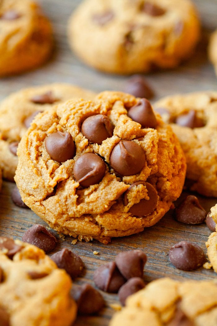 Flourless Chocolate Chip Cookies ~ 25 MORE Fabulous Flourless Cookies
