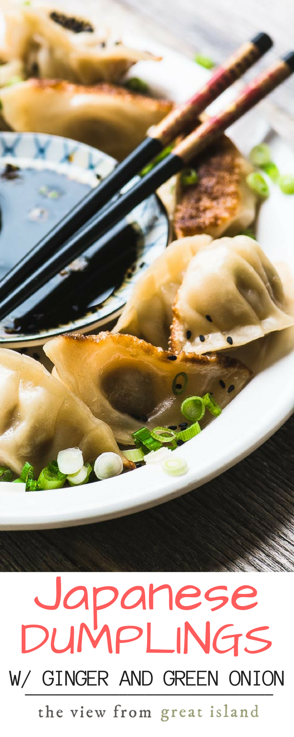 Japanese Pork Dumplings with Ginger and Green Onion ~ these tender potstickers are even better than the ones at your favorite restaurant! | pasta | appetizer | gyoza | potstickers | pork |