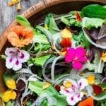 Spring Salad with Edible Flowers
