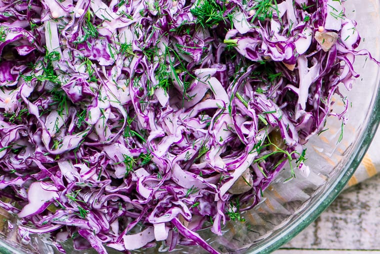 Colorful red cabbage and dill slaw