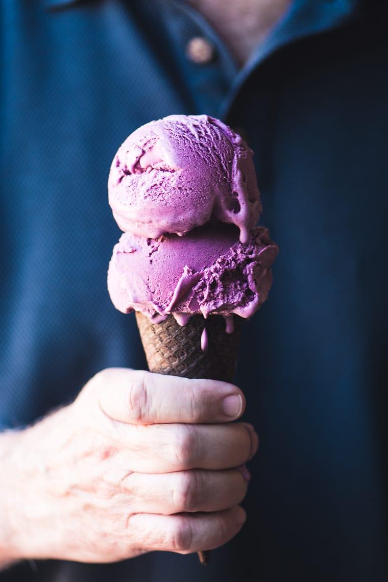 Wild Blueberry Ice Cream
