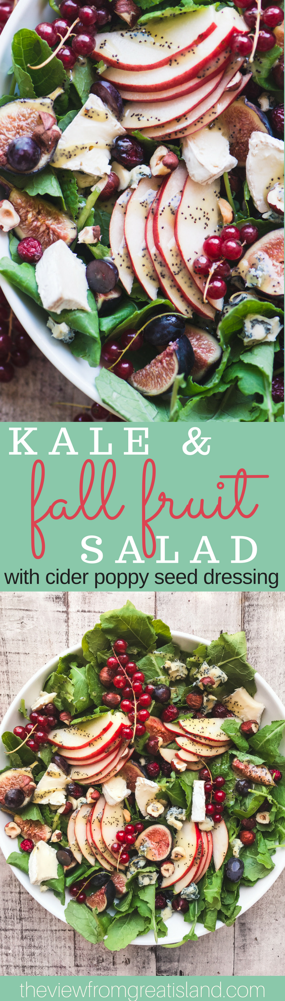 Kale and Fall Fruit Salad with Cider Poppy Seed Dressing ~ this is the Queen of fall salads, with pear, cranberries, figs, pomegranate, and grapes, all tossed in a creamy cider vinaigrette. #fall #healthy #paleo #glutenfree #whole30 #vegetarian #fallsalad #fruitsalad #fallfruit #poppyseeddressing #bestpoppyseeddressing #holidaysalad #thanksgivingside #superfood #kale
