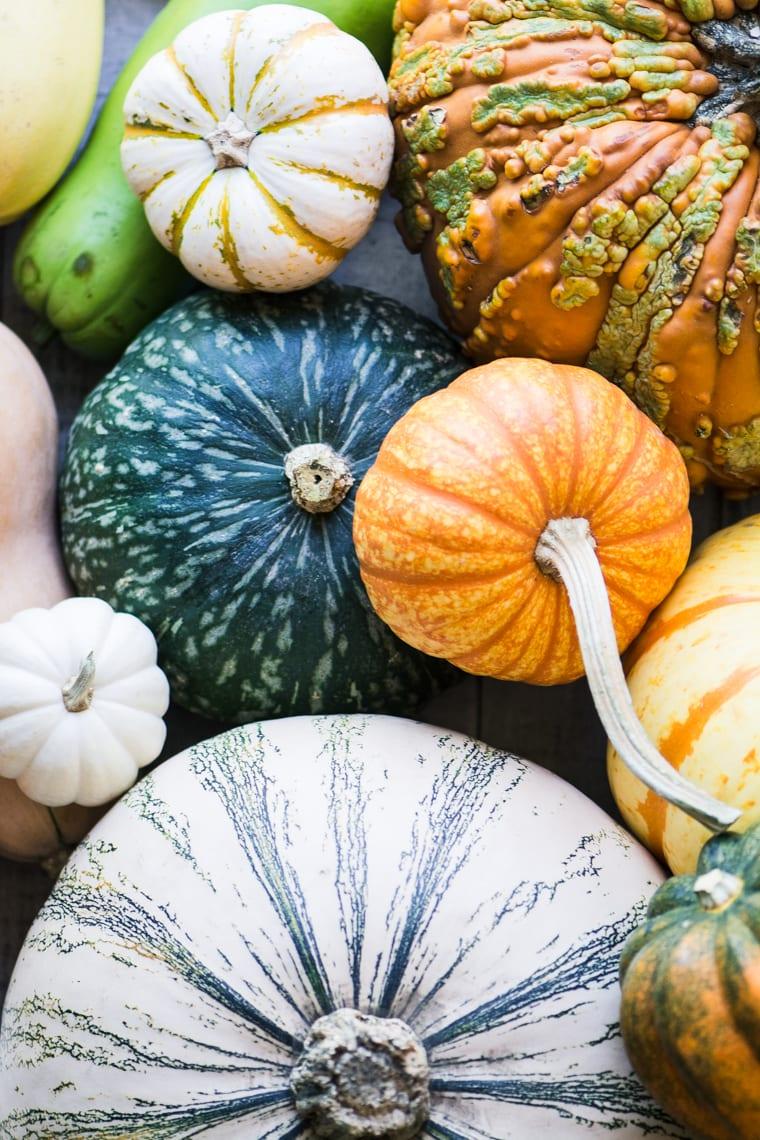 assorted pumpkins and winter squash