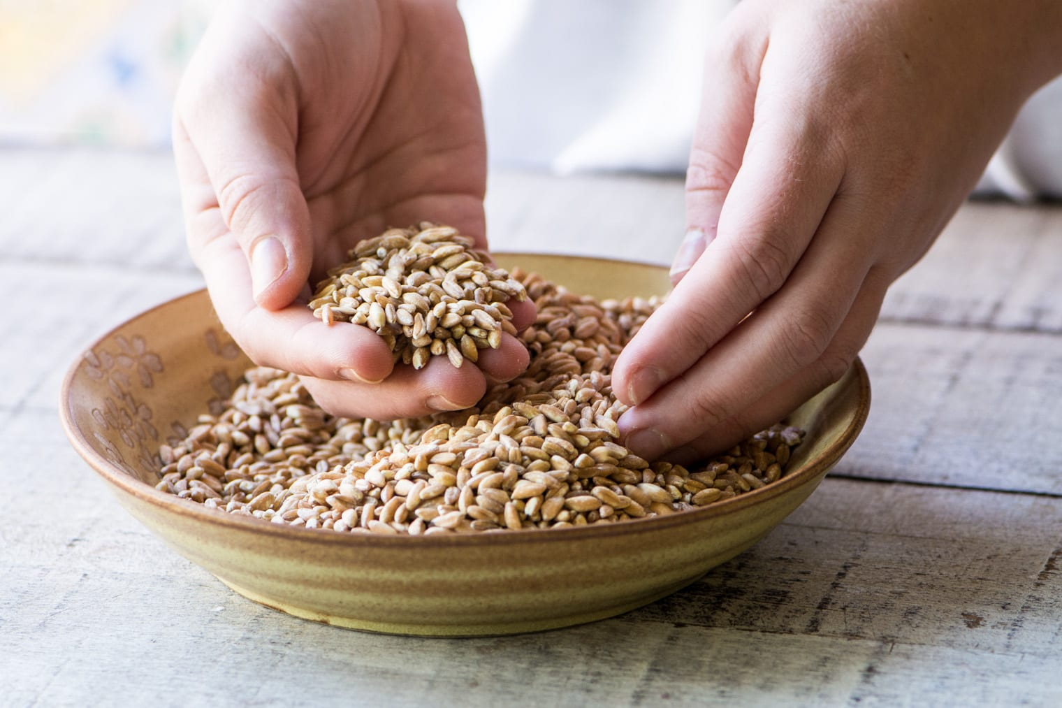 wheat berries in a bowl