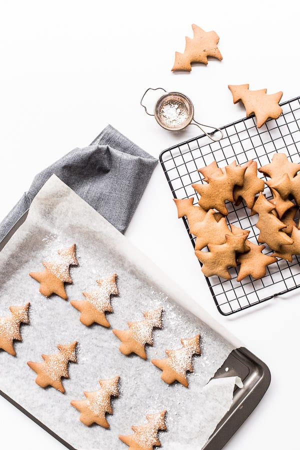 red wine gingerbread cookies