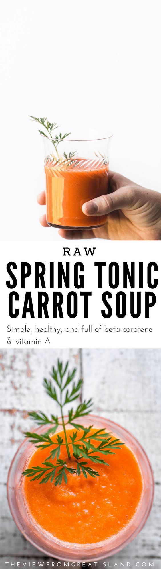 Spring Tonic Carrot Soup ~ a vibrant beta carotene and Vitamin A rich raw soup that'll kick start you into the new season ~ are you ready? #soup #raw #carrots #carrotsoup #appetizer #tonic #healthtonic #springsoup #carrotjuice #juicing #glutenfree #whole30 #paleo #vitamixsoup #vitamix #Mothersdayrecipe #easterrecipe #passoverrecipe #healthysoup