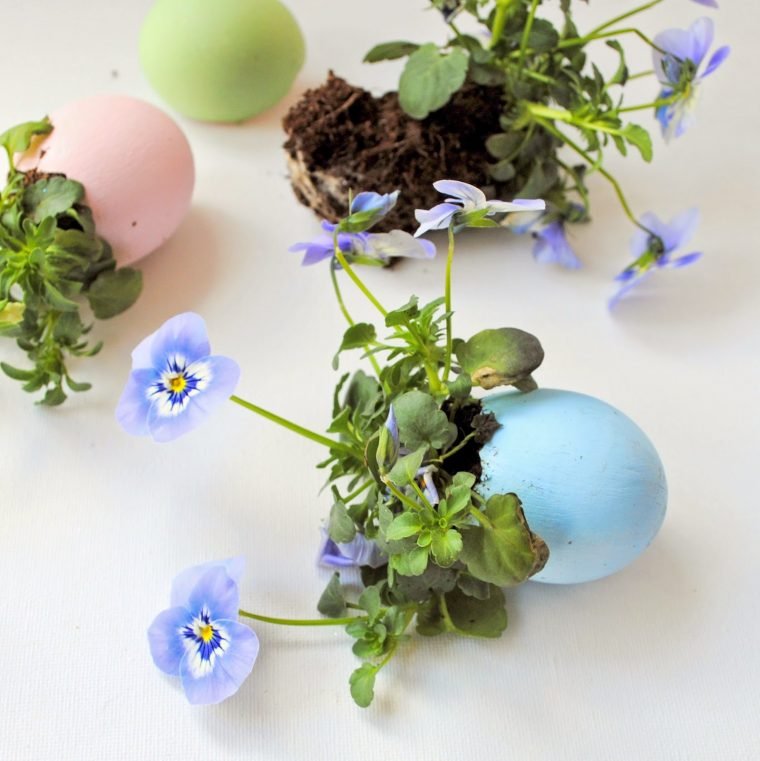 eggshells filled with flowers on a table