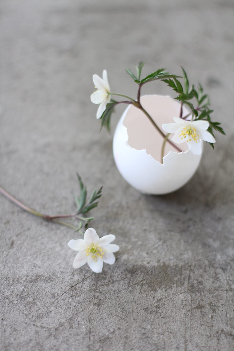 eggshells made into flower vases for spring