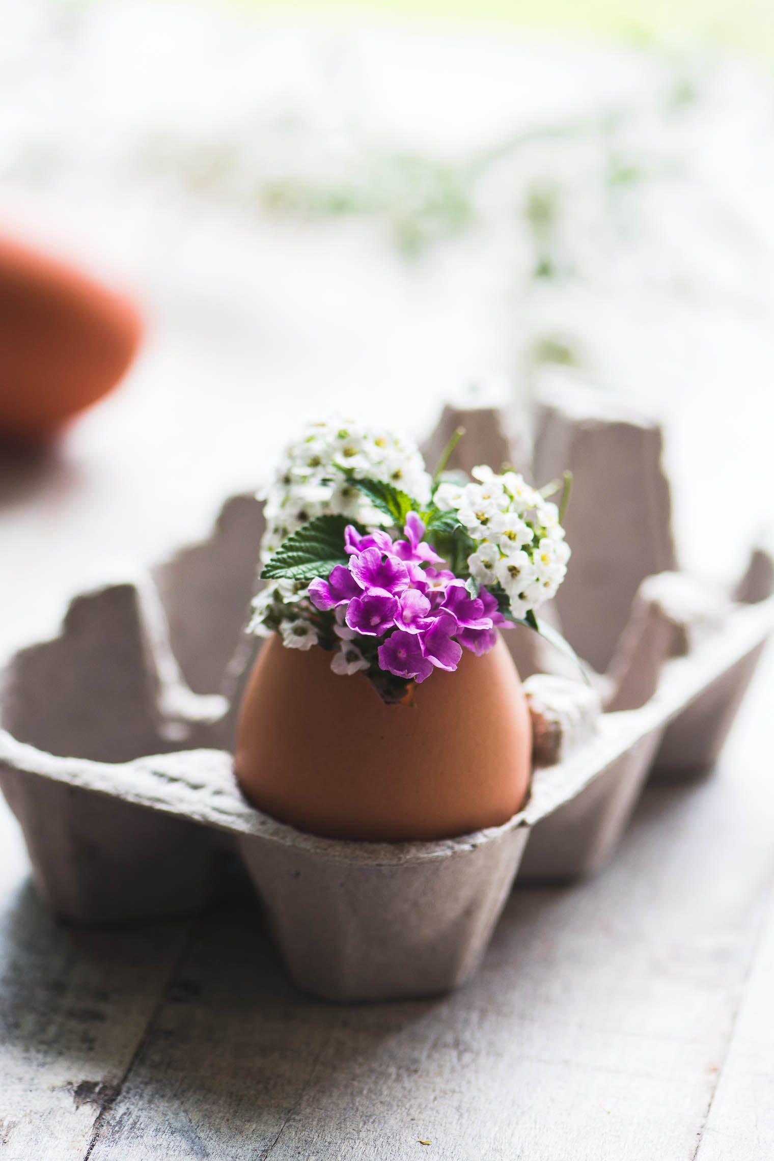 flower vase made from a half egg shell.
