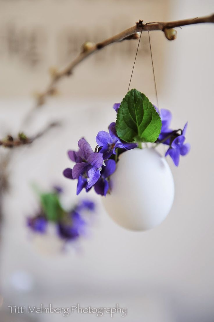 hanging flower vases made from eggshells