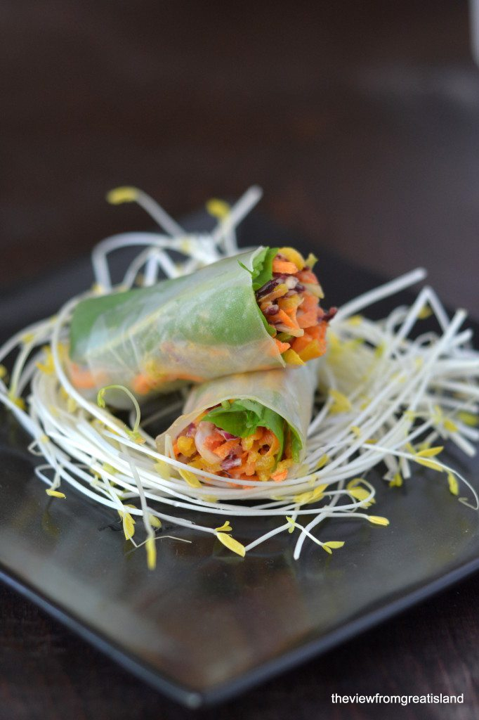 spicy asian slaw summer rolls on a nest of sprouts