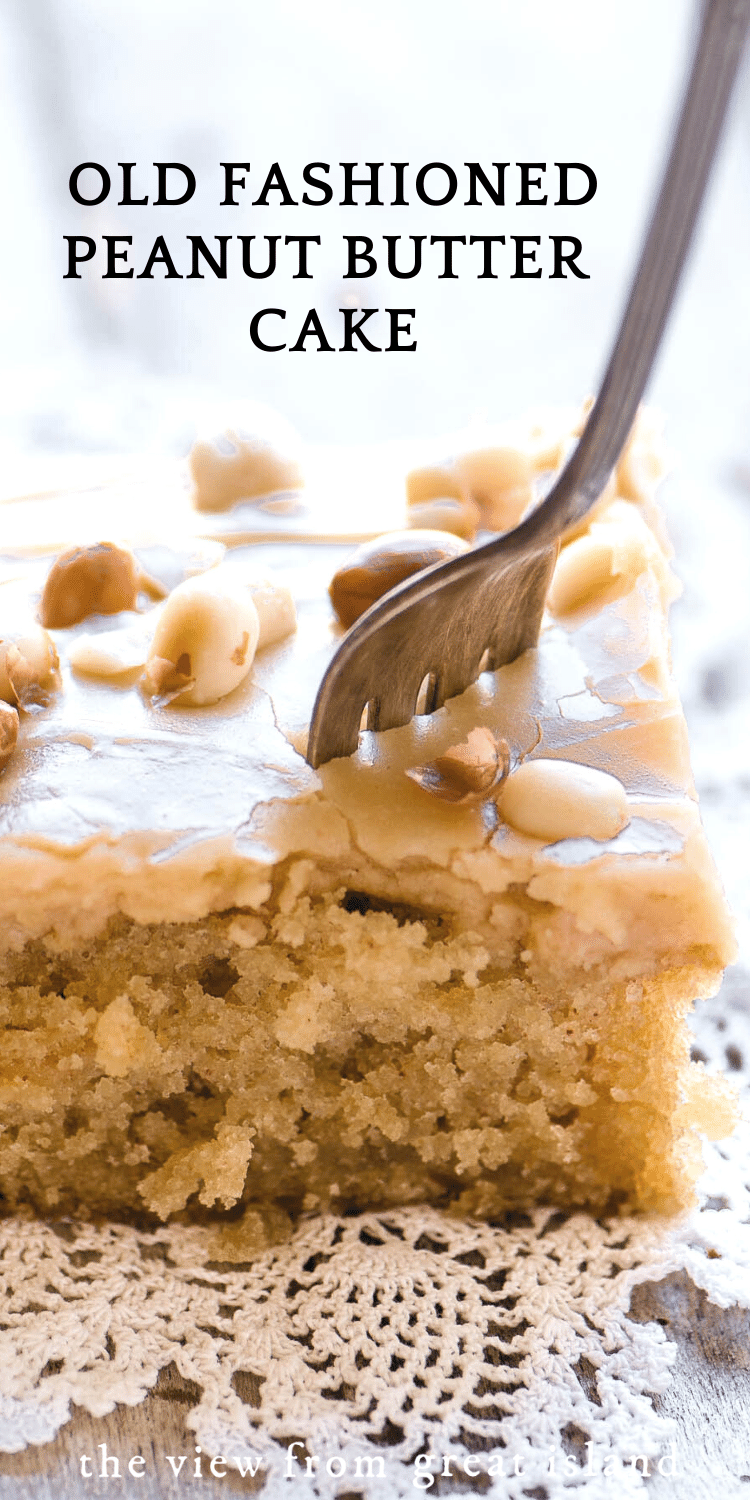 peanut butter cake pin