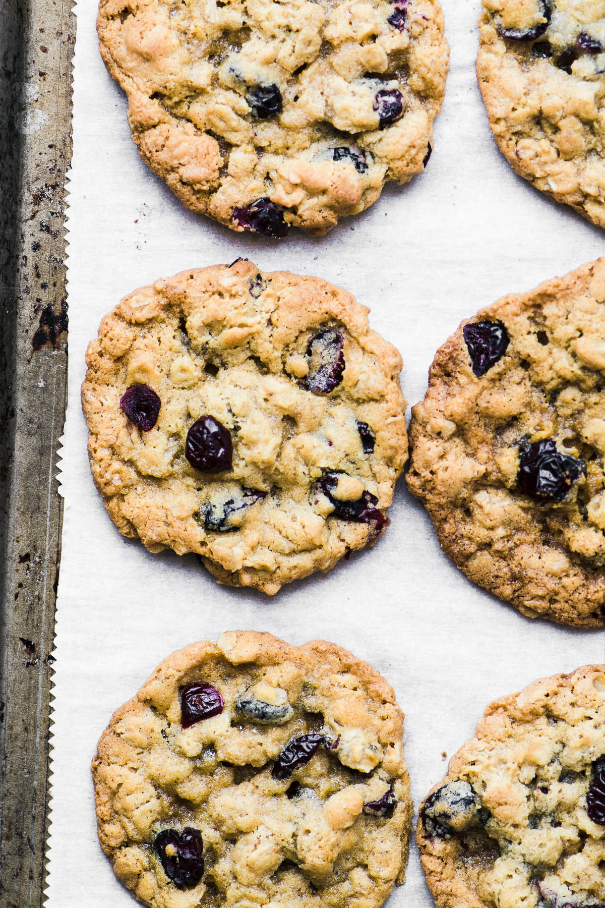 oatmeal cranberry cookies on a baking sheet