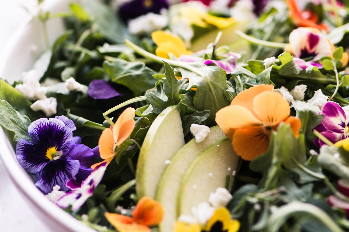 Pansy Salad