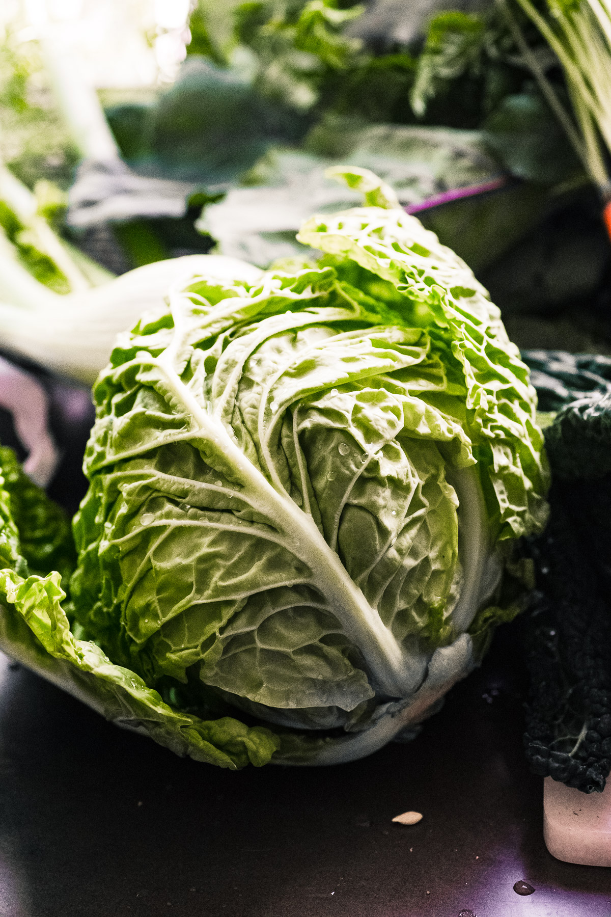 cabbage for a Vibrant Winter Slaw