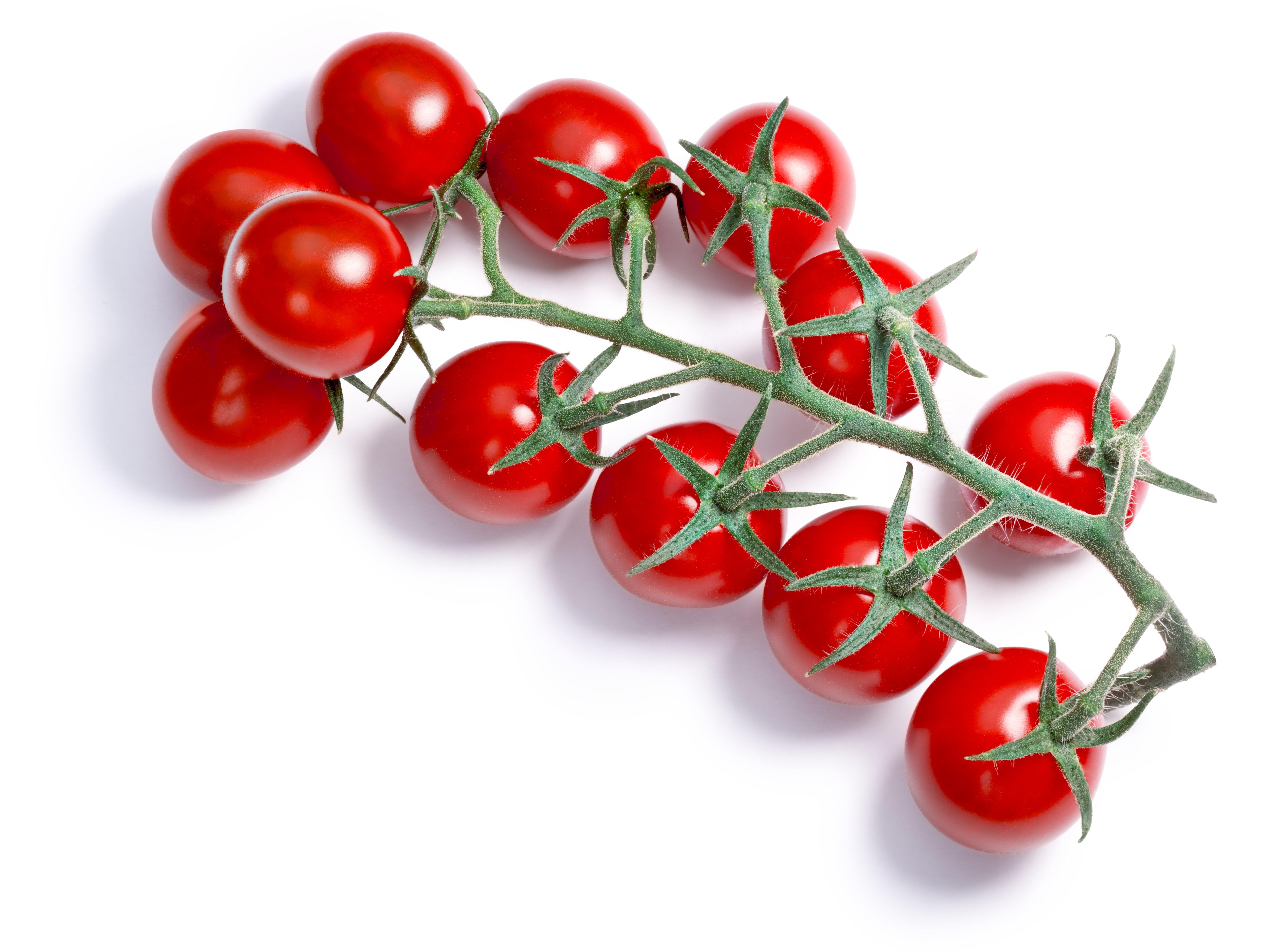 cherry tomatoes on stem