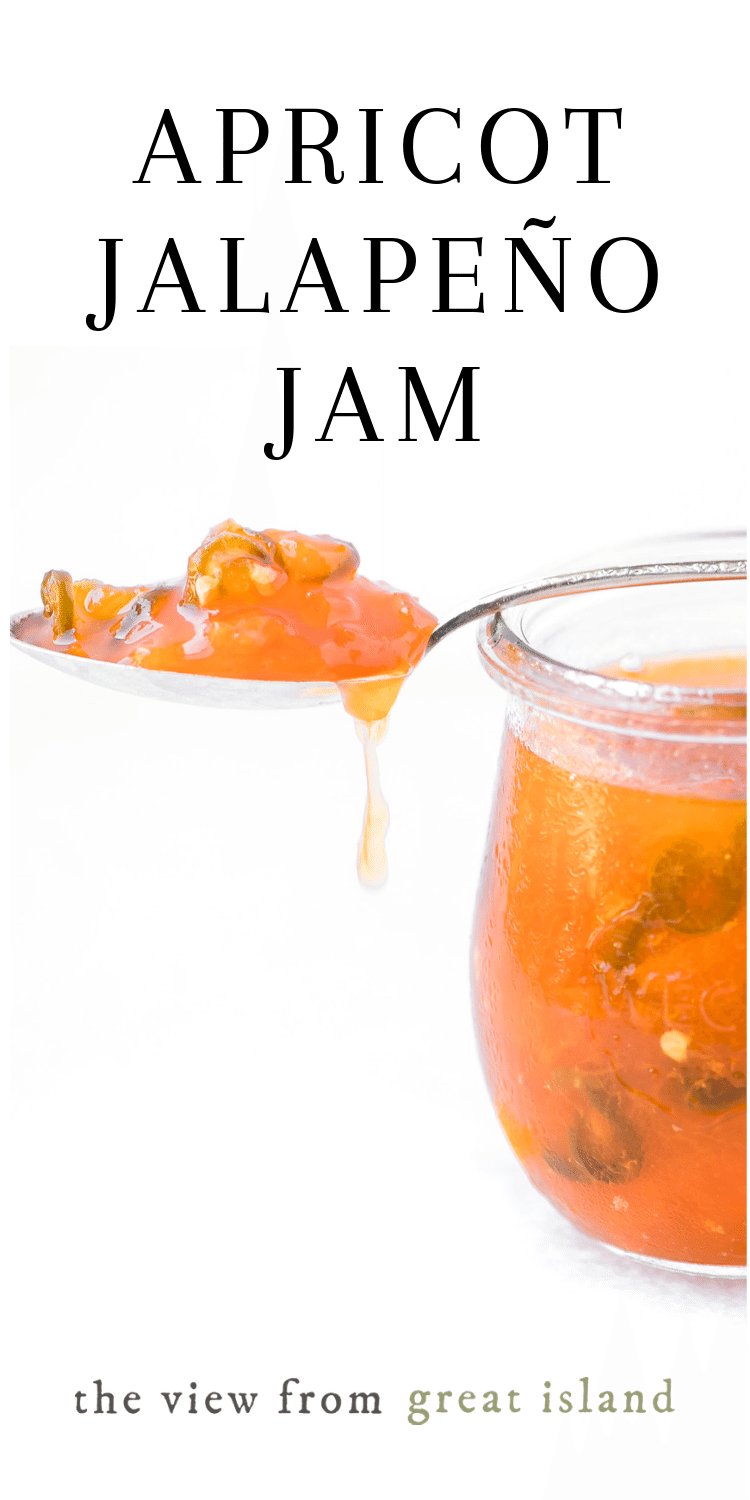 Apricot Jalapeño Jam ~ a delicious appetizer with soft cheese and crackers.  Do this easy hot pepper jam as a small batch, refrigerator style, or can it. #easy #recipe #pectin #jars #appetizer #jalapeño #uses #spicy #canning #dip #nopectin #creamcheese