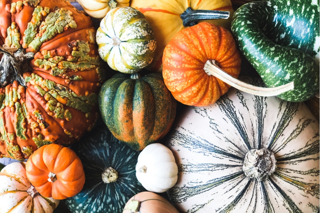How to cook any type of winter squash