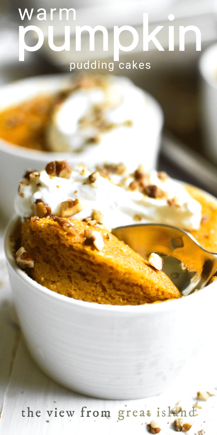 warm pumpkin pudding cakes pin