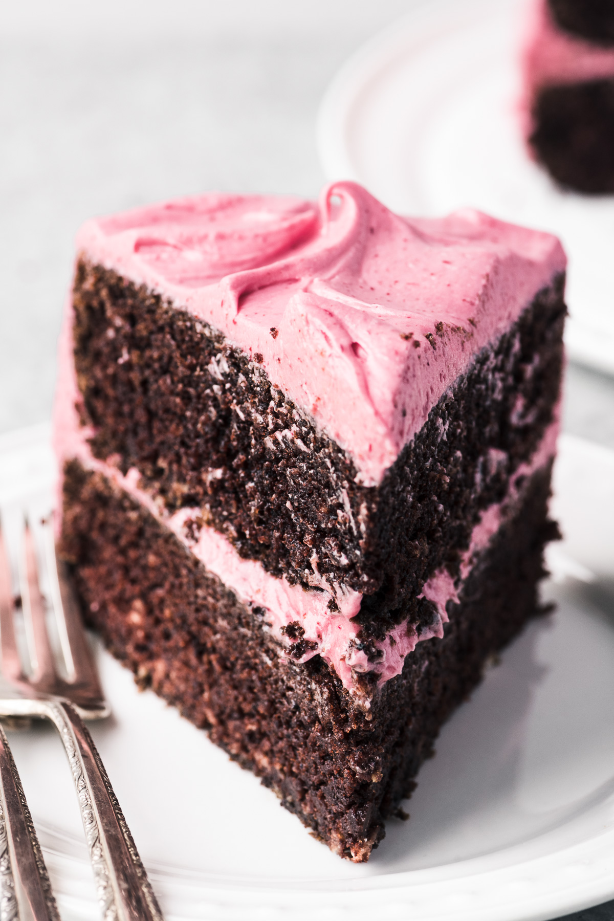 chocolate cake with cranberry buttercream slice