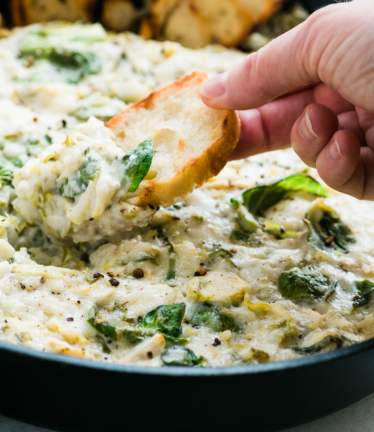 Cheesy Brussels Sprout Dip with grilled bread