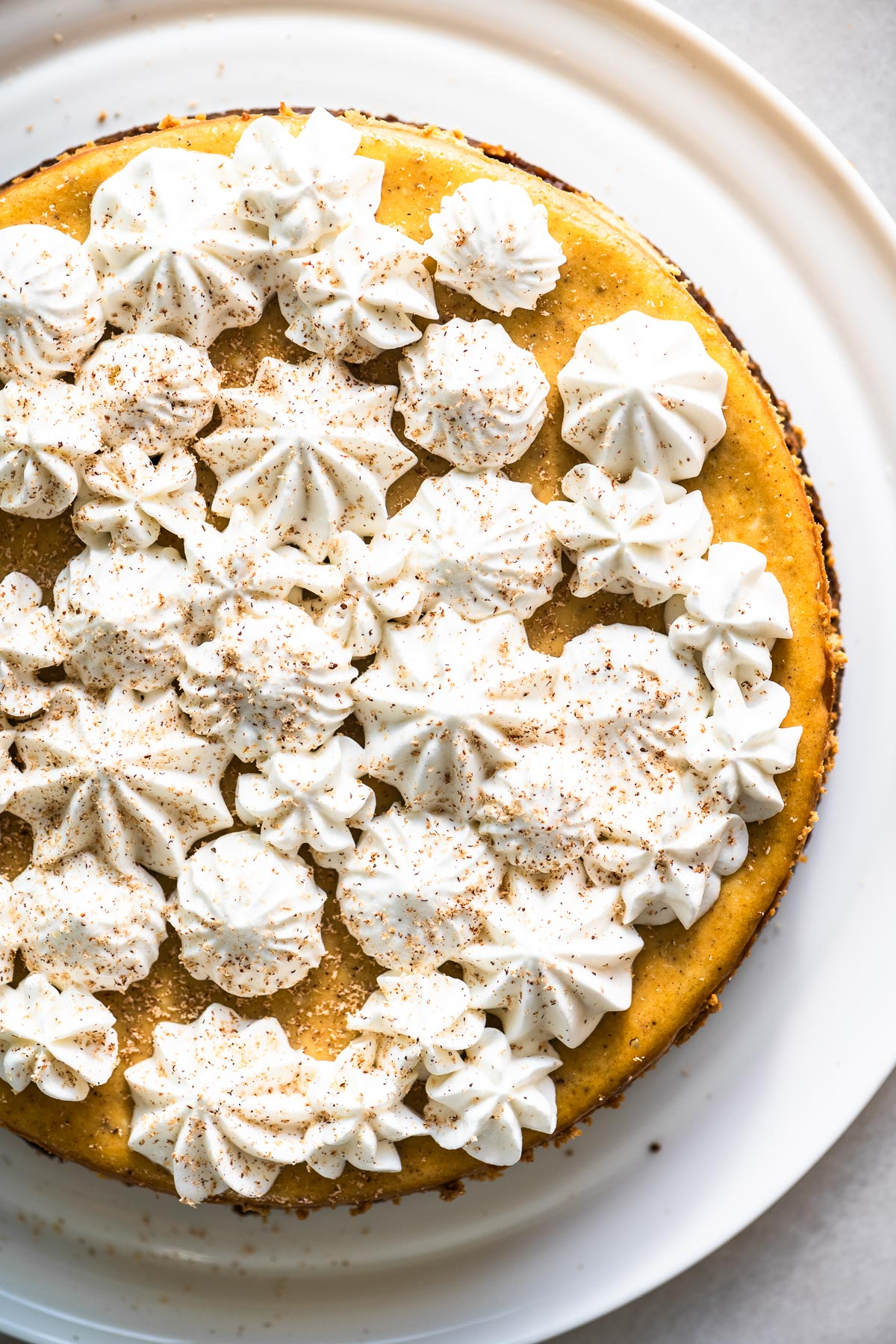 pumpkin spice cheesecake topped with piped whipped cream