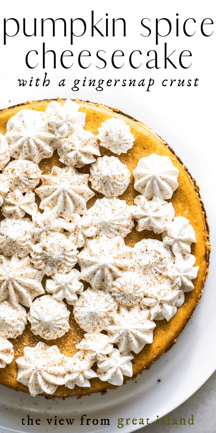 pumpkin spice cheesecake pin