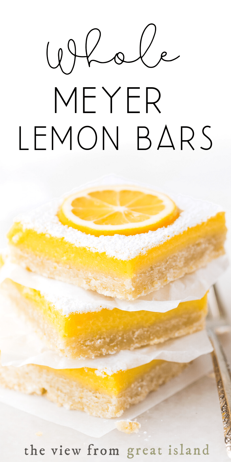lemon bar pin