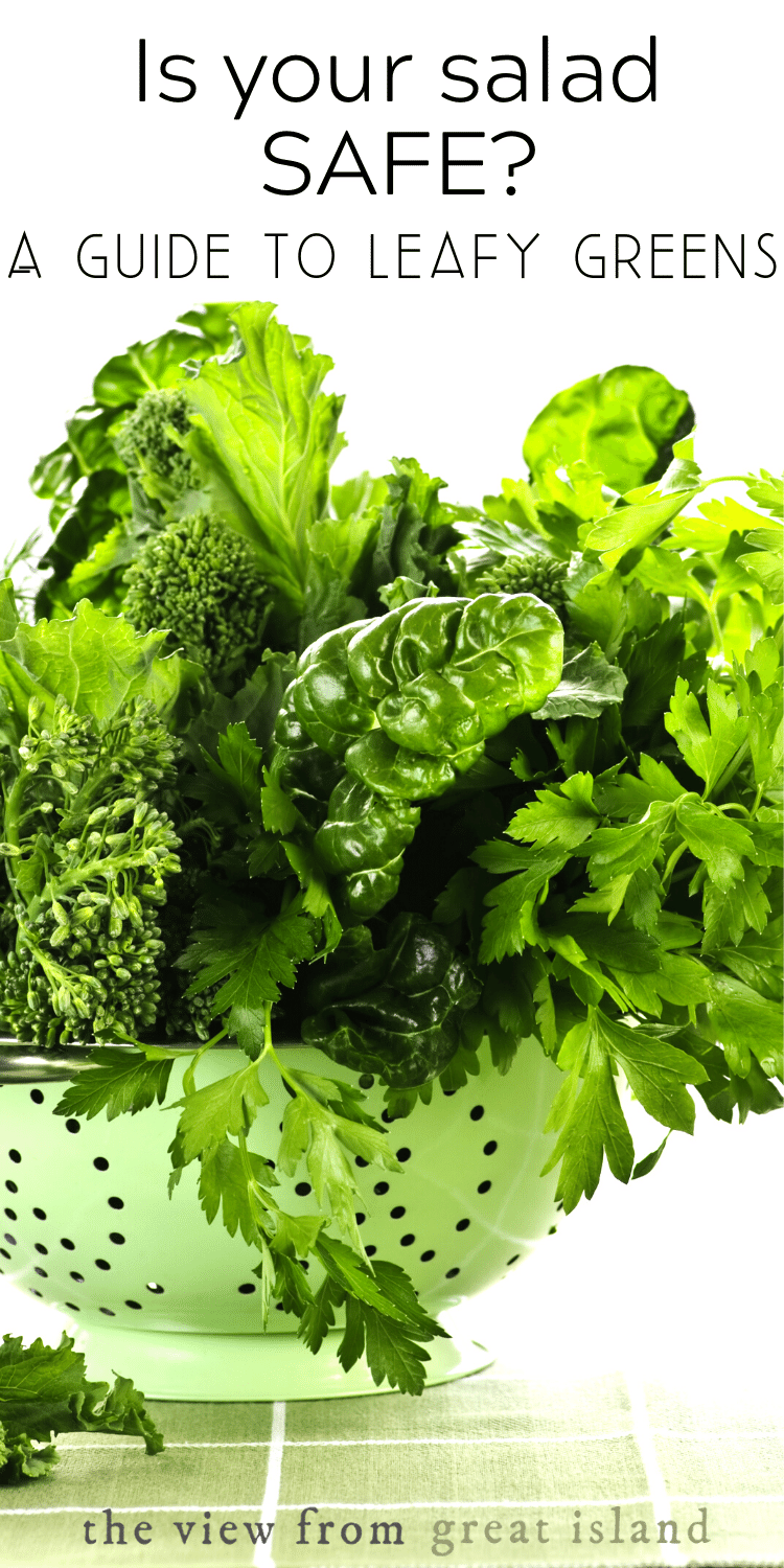 guide to leafy greens pin 2