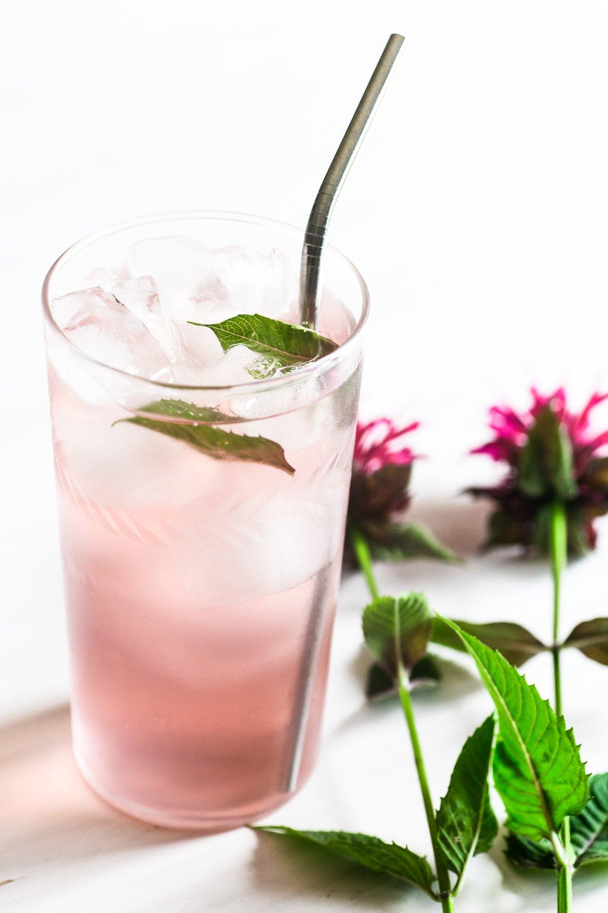bee balm sun tea in a glass with ice