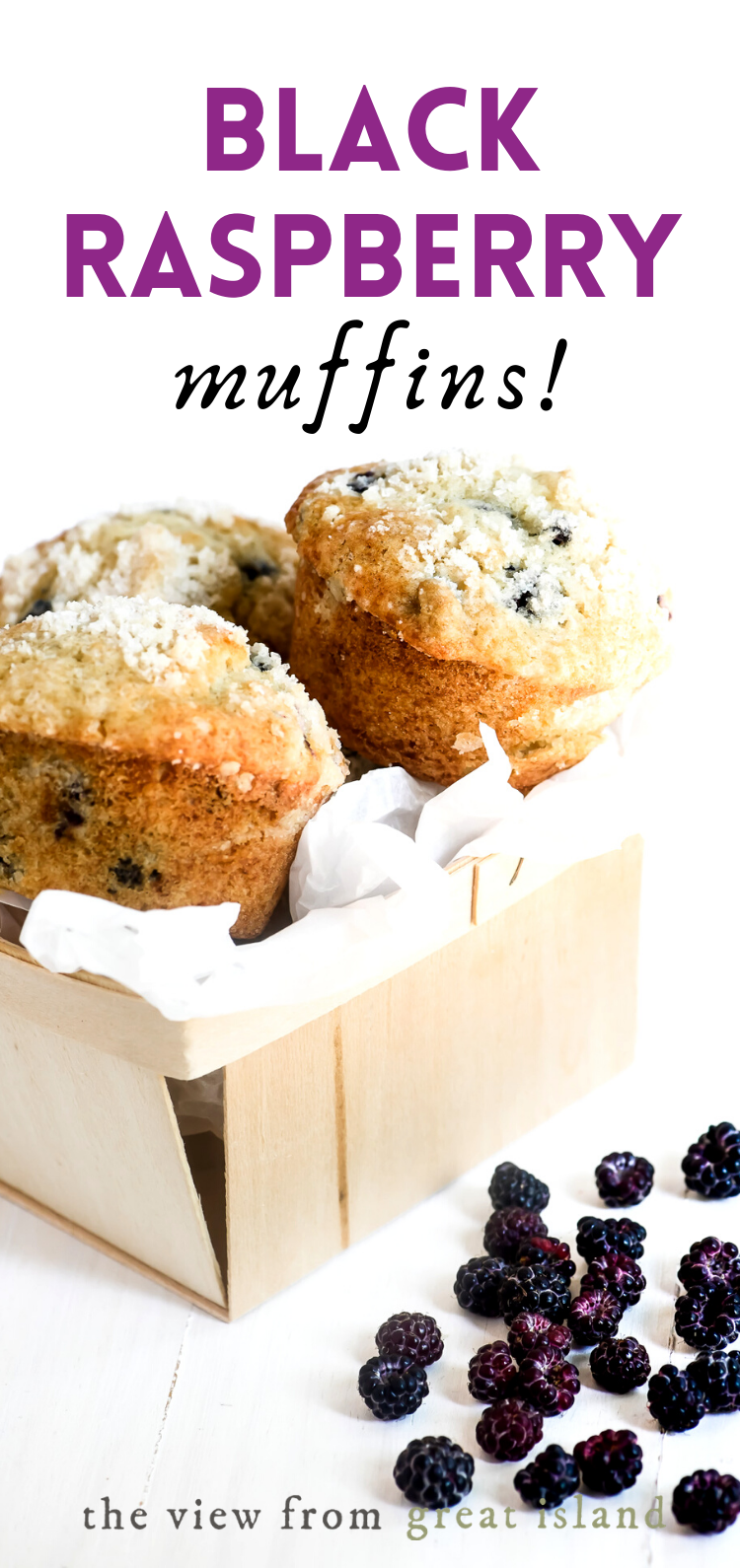 Black Raspberry Muffins pin