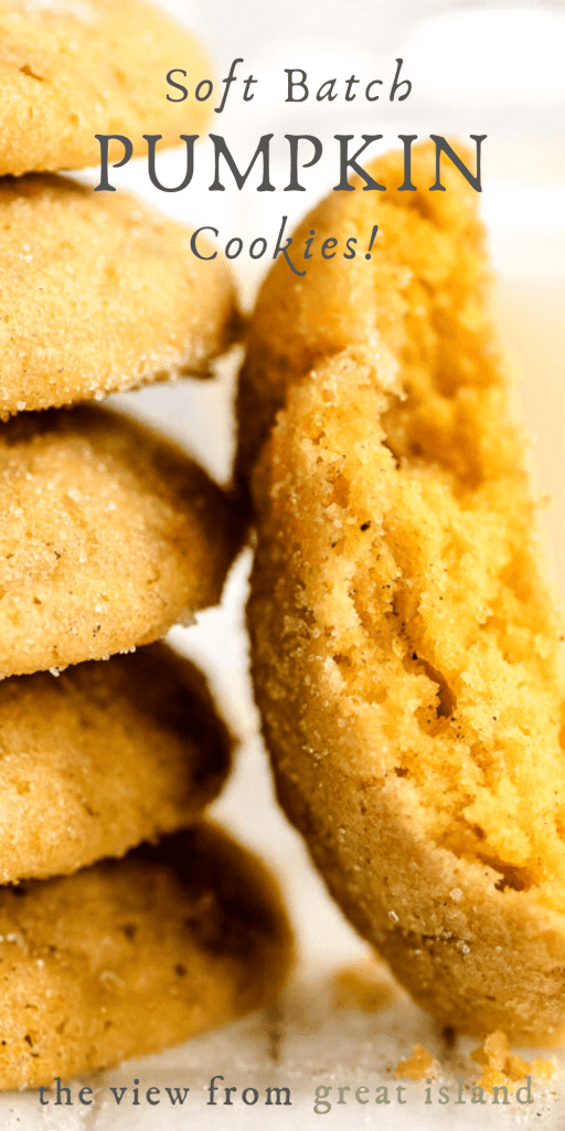 Soft batch pumpkin cookies pin