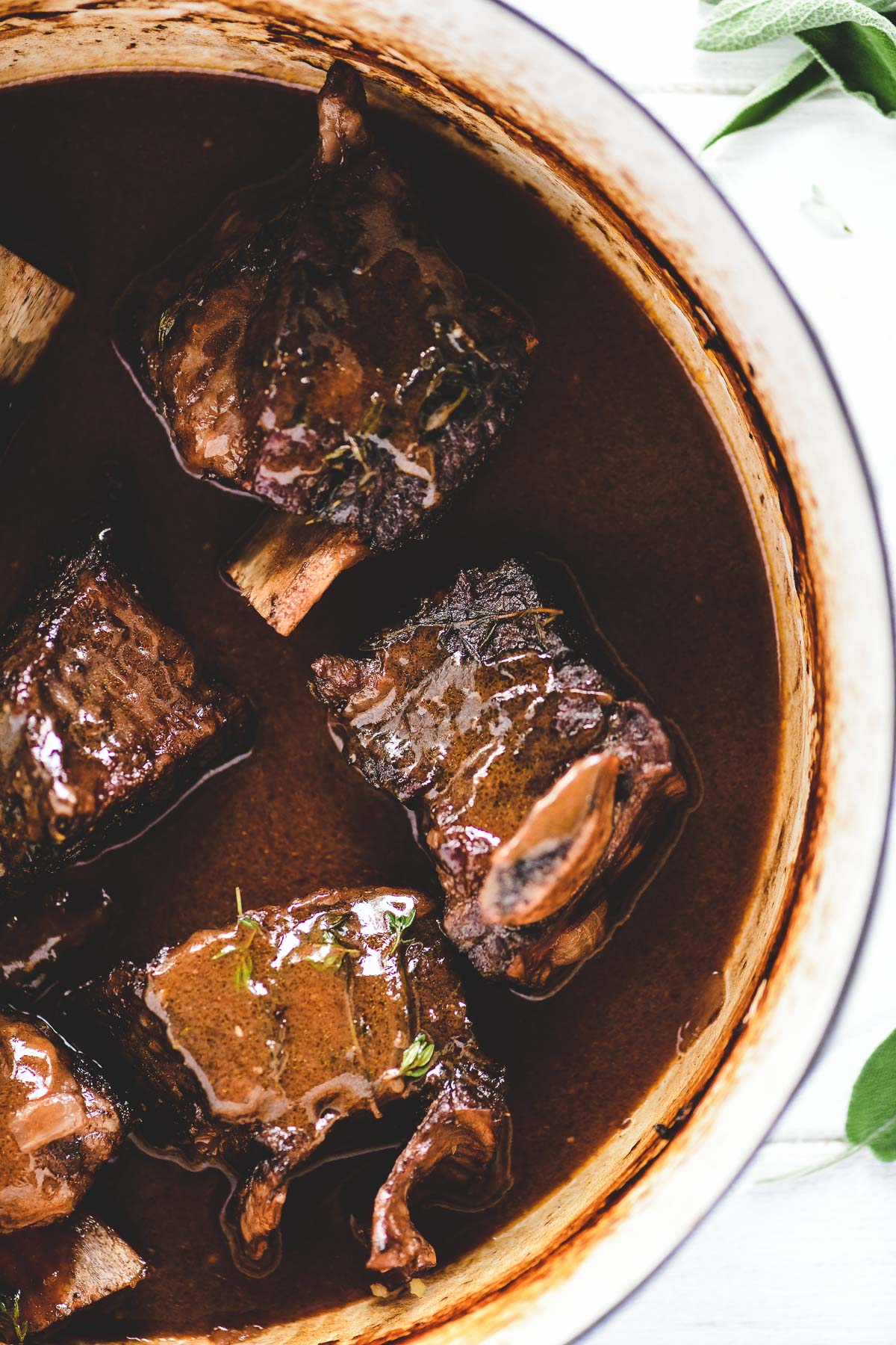 wine braised short ribs in gravy