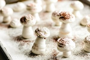 dusting meringue mushrooms with cocoa powder