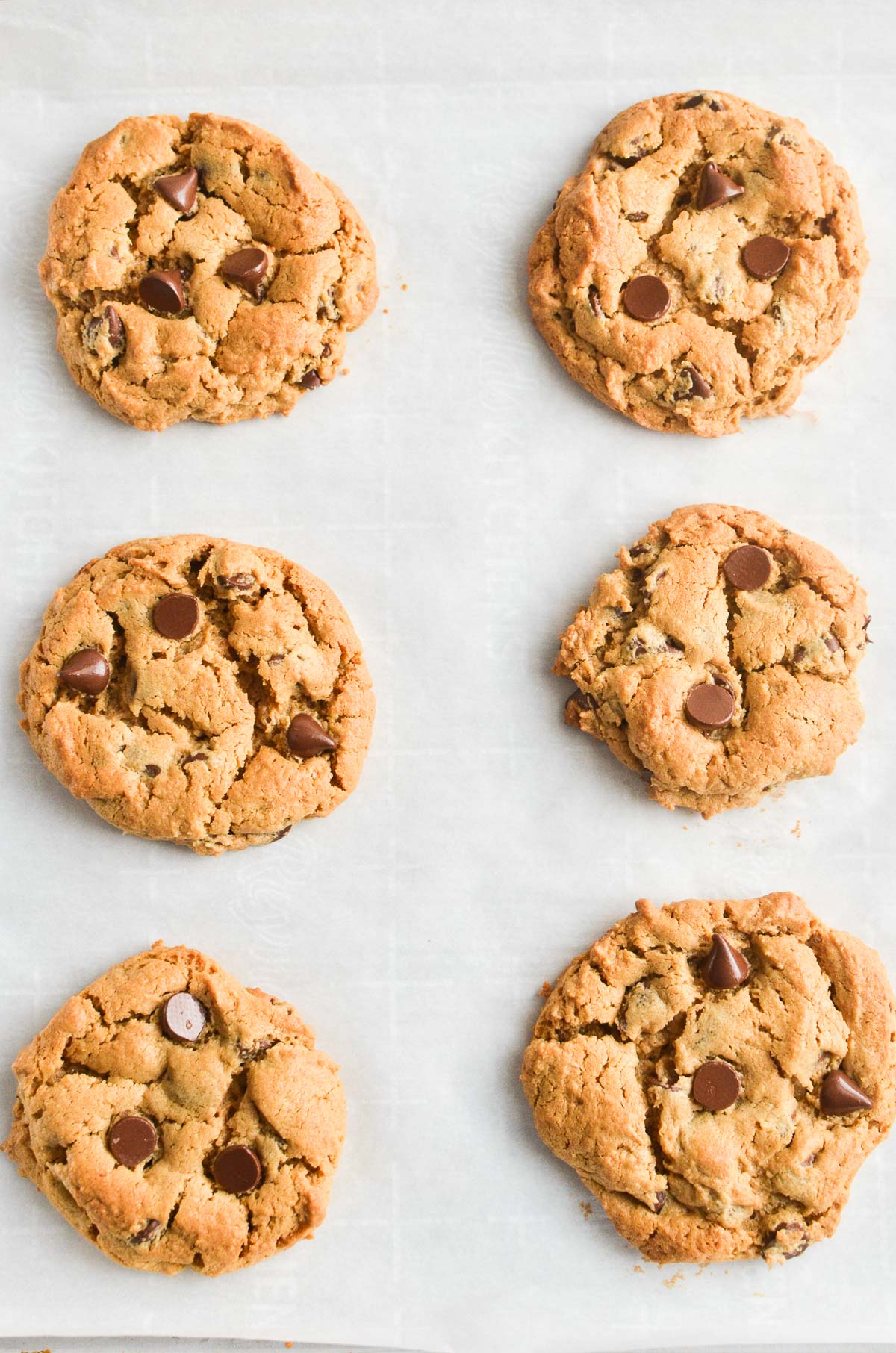 flourless peanut butter chocolate chip cookies on parchment paper