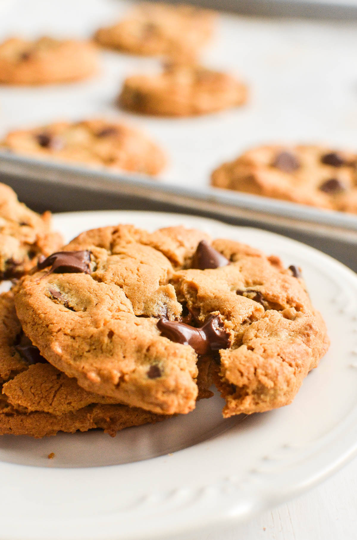 Flourless peanut butter chocolate chip cookies on a white plate.