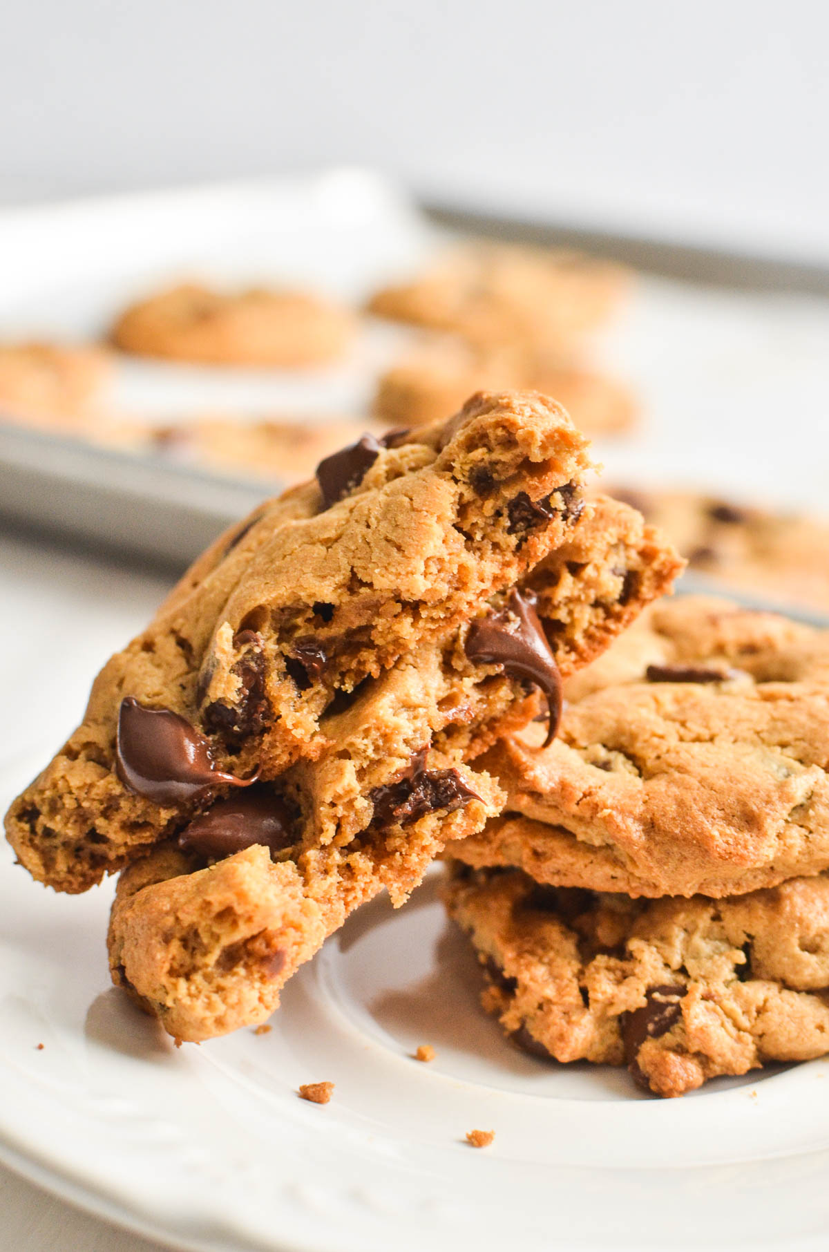 A flourless peanut butter chocolate chip cookie broken in half.