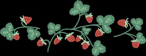 clare artwork | strawberries