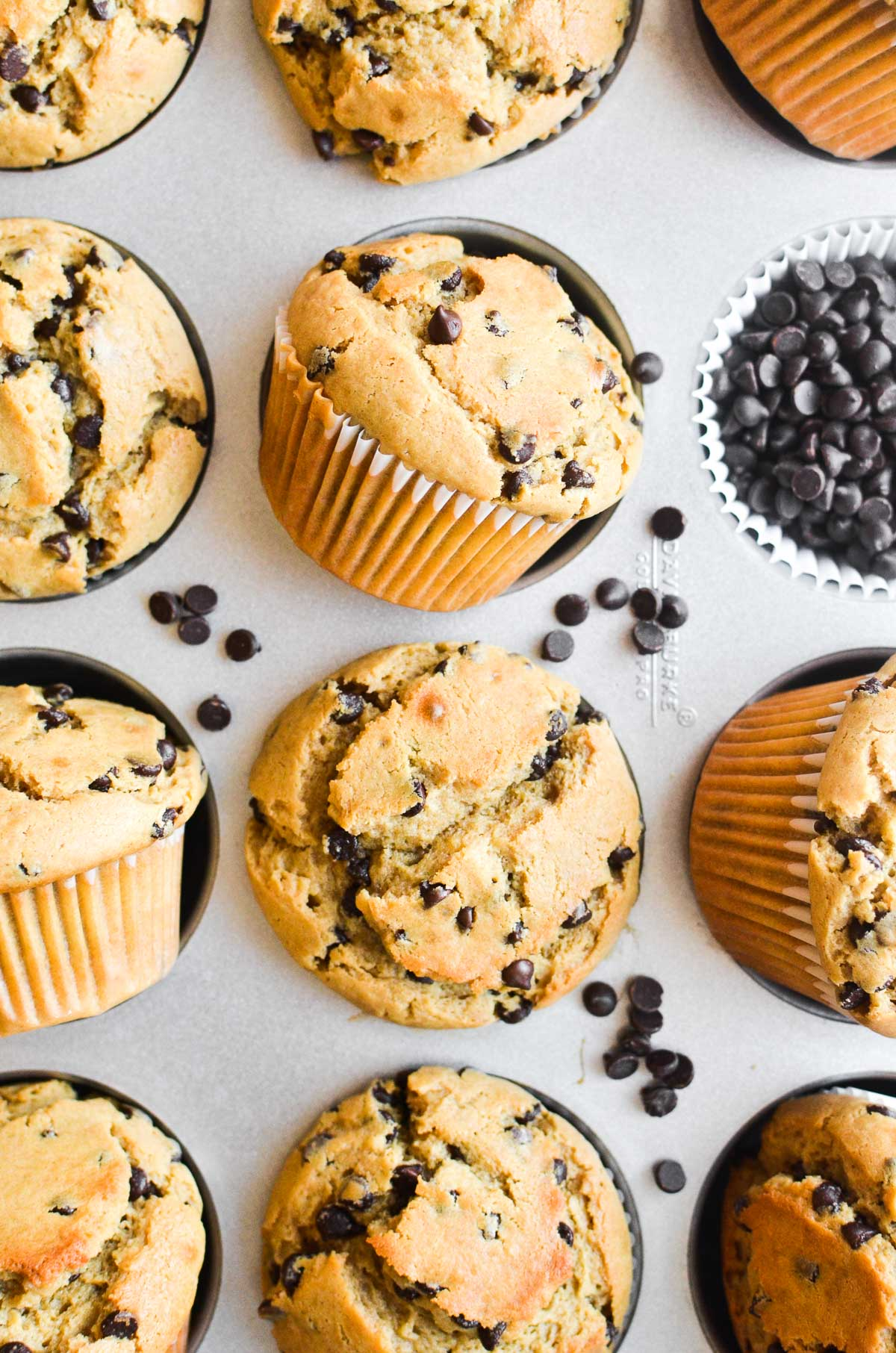 peanut butter muffins in a muffin tin with chocolate chips