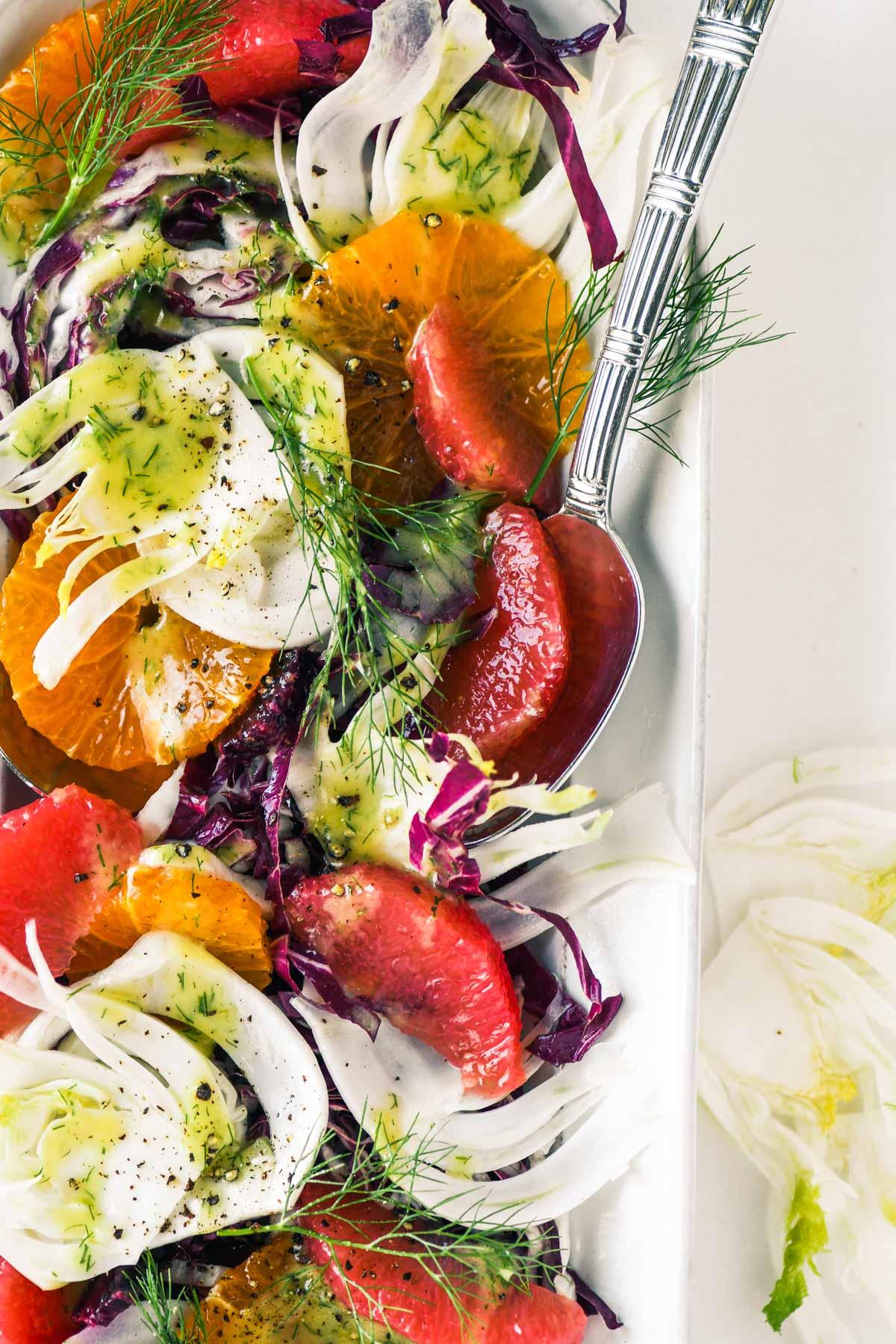 fennel salad with radicchio and citrus fruit