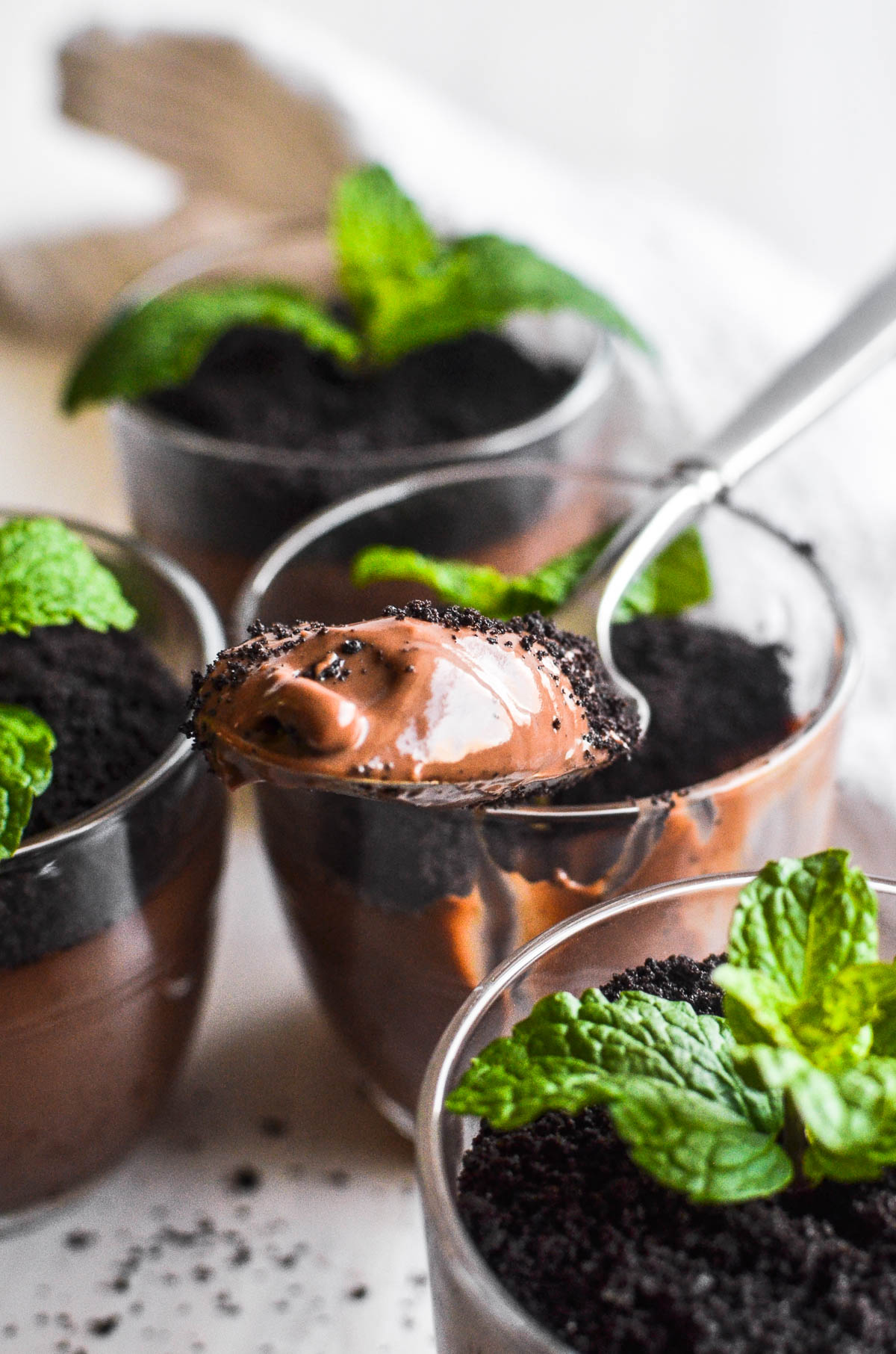 A spoonful of mint chocolate pudding with crushed wafer topping and mint sprigs.