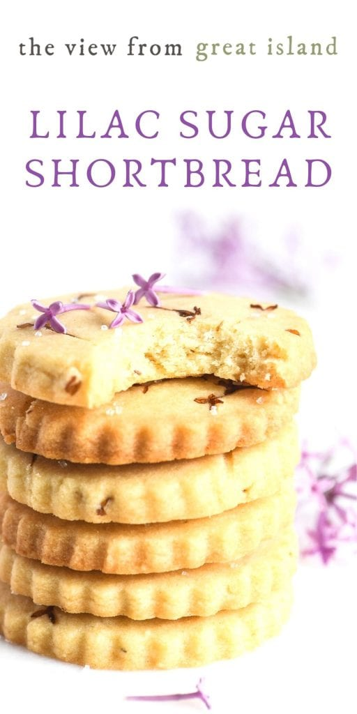 lilac shortbread pin