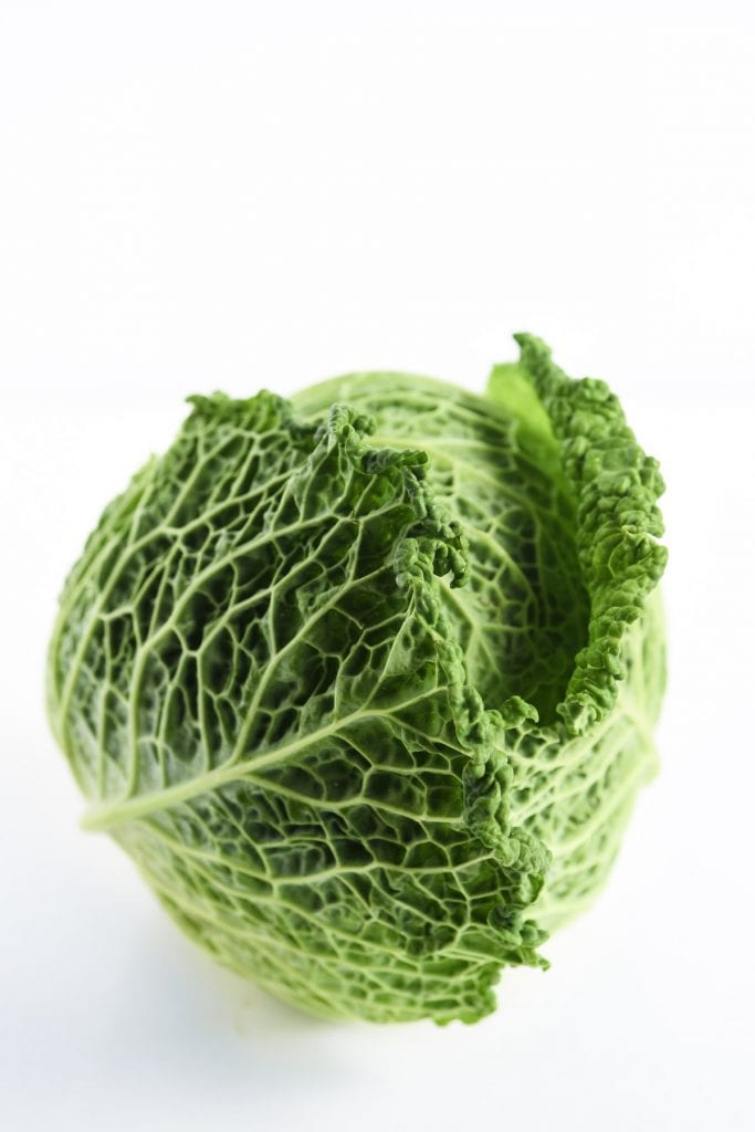 a head of Savoy cabbage