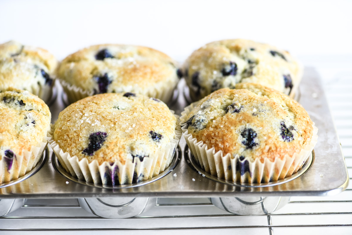 blueberry muffins, just baked
