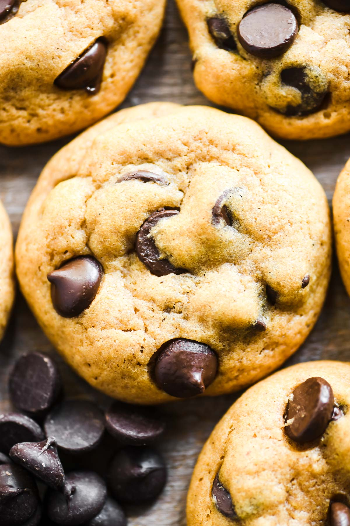 pumpkin chocolate chip cookies with chocolate chips